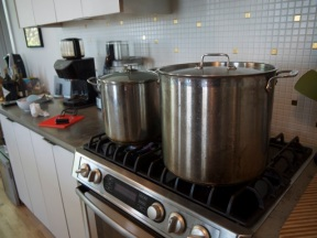 Seal the jars and boil for 7 minutes to pasteurise.