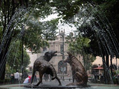 Coyoacan (the place of the coyotes)