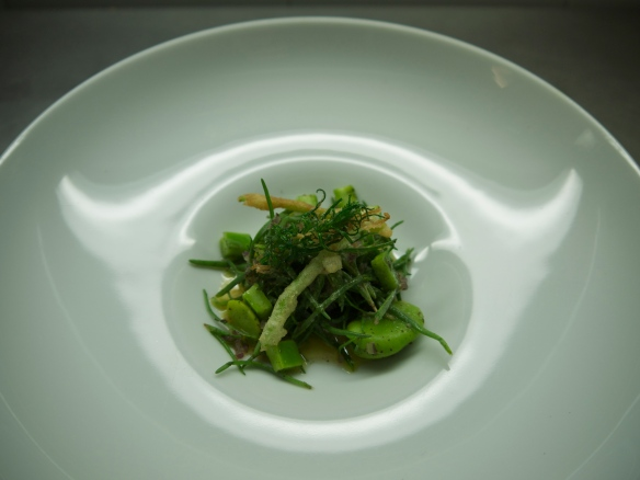 Salad Pujol