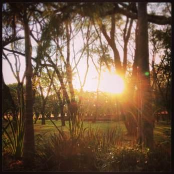 Sunset in Minas