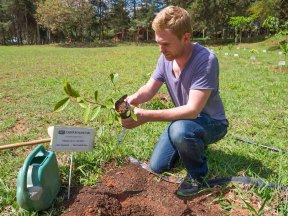 Foodish Boy Plants a Tree